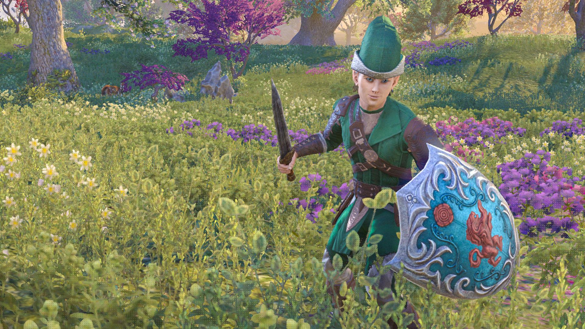 Zelda-Eso-Build-01